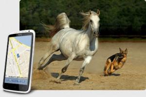 Автономный GPS + ГЛОНАСС Маяк Контроль за животными