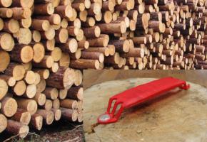 Бирки с RFID для ценных пород древесины